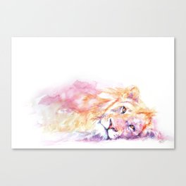 Lazy Days - African Lion Canvas Print