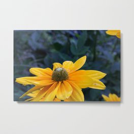 Sunny Sunday Sipping Metal Print