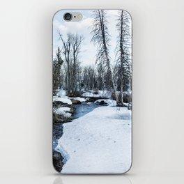 Dreaming of Cottonwood Creek iPhone Skin