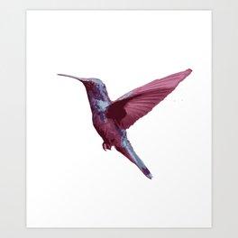 Beautiful Purple Violet Hummming Bird Art Print