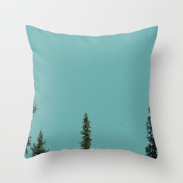 Canoe on Lake Louise Throw Pillow