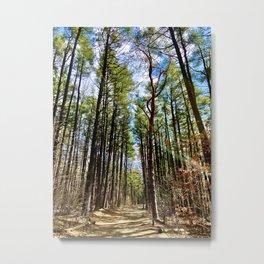 Follow the Path Metal Print