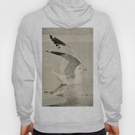 Vintage Illustration of a Seagull (1902) Hoody