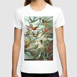 Vintage Hummingbirds Decorative Illustration T-shirt