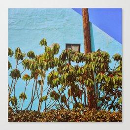 TROPICALIA (2016) Canvas Print