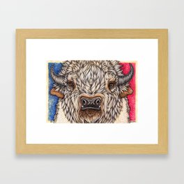White Buffalo Calf Framed Art Print