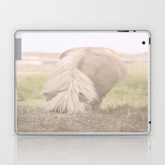 Little Pony Laptop & iPad Skin