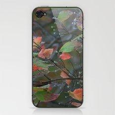 Fall in PA iPhone & iPod Skin
