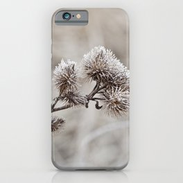 Early frost winter still life iPhone Case