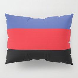 Polyamorous Flag Pillow Sham