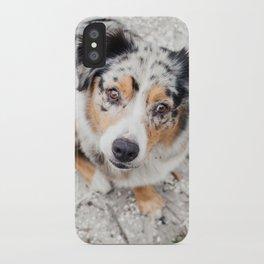 Australian Shepherd iPhone Case