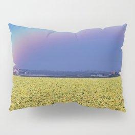 Rainbow at Narcissus field Pillow Sham