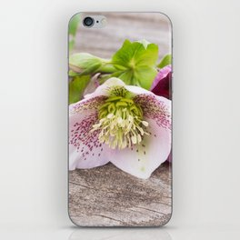 Gifts from the Garden iPhone Skin