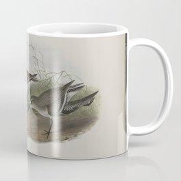 273 Pelinda cinclus. (Winter plumage). Dunlin (winter plumage) Coffee Mug