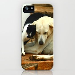 Like cats and dogs iPhone Case