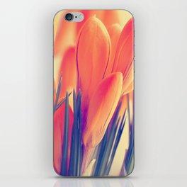 Spring 151 iPhone Skin