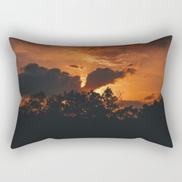Orange Is A Color, And A Fruit.  Rectangular Pillow