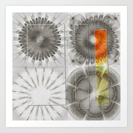 Rearisal Woof Flower  ID:16165-041512-61251 Art Print