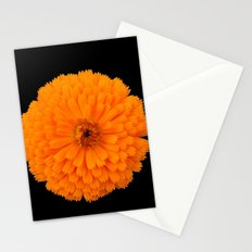 marigold flower on black background Stationery Cards