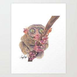 Tarsier - Bush Baby Art Print