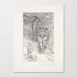 Leopard, Wegner & Mottu, after August Allebé, 1880 Canvas Print