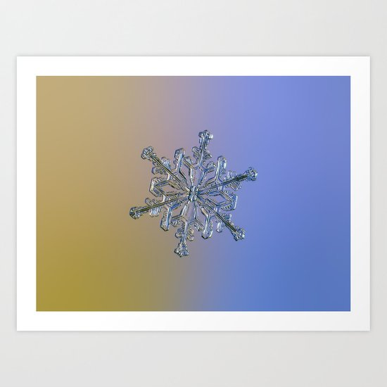 Snowflake Macro Photo - 13 February 2017 - 2 alt Art Print