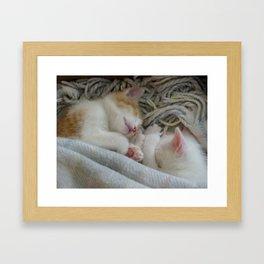 Serenity of Sleep Framed Art Print
