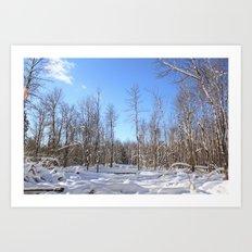 Slalom Art Print