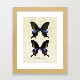 Butterfly11_Papilio Hoppo pair Framed Art Print
