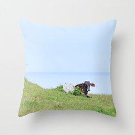 Rosa Cow Throw Pillow