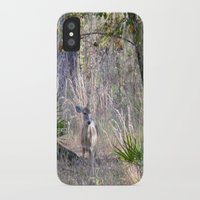 fairytale iPhone & iPod Cases featuring Fairytale by Sara Evans