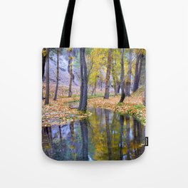 """""""Curves"""". Autumn forest Tote Bag"""