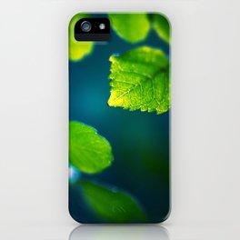 Nature Blues iPhone Case