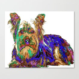 Muffin. Pet Series Canvas Print