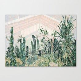Cactus garden (2) Canvas Print
