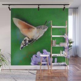 Hummingbird Moth. Wall Mural