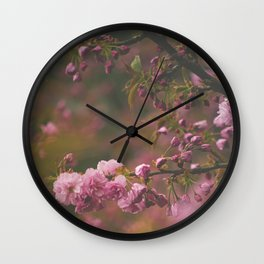 Sprung on Spring Wall Clock