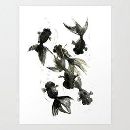 Black Moor, Feng Shui art, black fish zen painting Art Print