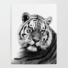 Black and white fractal tiger Poster