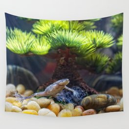 Friendly Frog HD Wall Tapestry