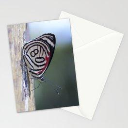 Butterfly 80 Stationery Cards