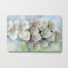 the beauty of a summerday -53- Metal Print
