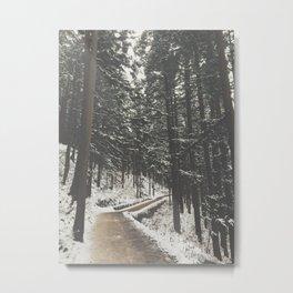 Path 2 Neverland Metal Print