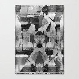 klinoplasticity Canvas Print