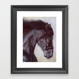 Horse Head - Ballpoint Pen Framed Art Print