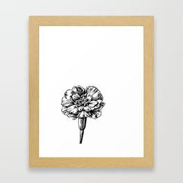 Marigold Framed Art Print