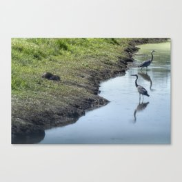 Sharing the River Canvas Print