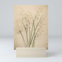 Scents of Spring - Lily of the Valley v Mini Art Print