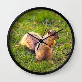 Levi The Squirrel Wall Clock