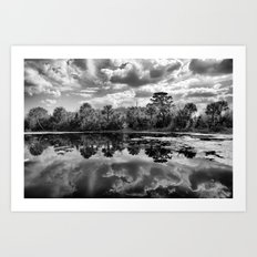 Green Cay Wetlands in Black and White Art Print
